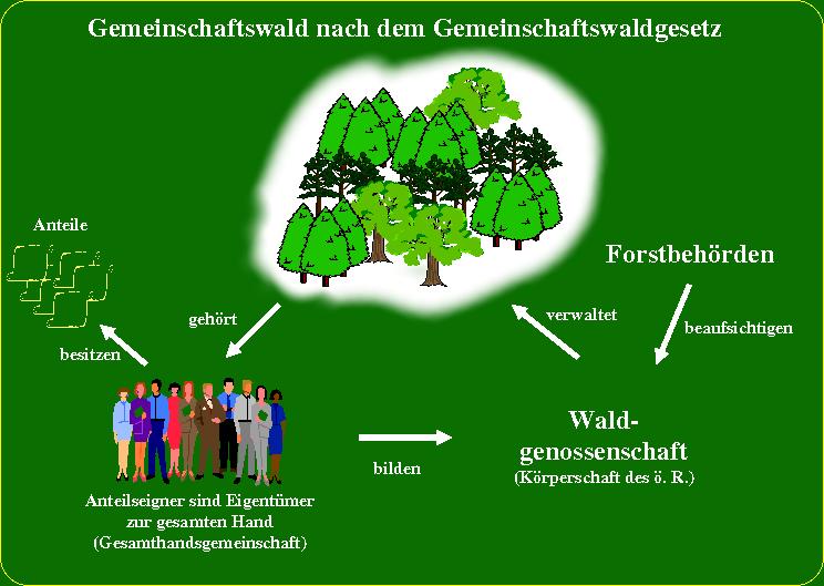 Gemeinschaftswaldgesetz